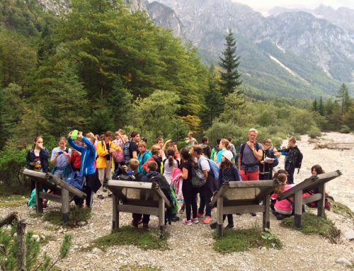 Poletne planinske ustvarjalnice