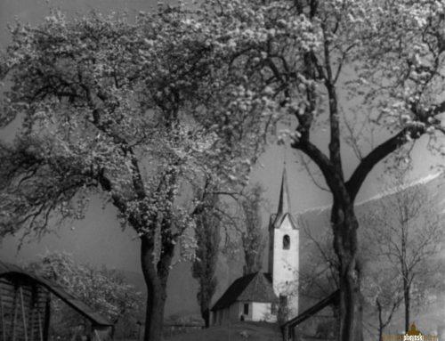 Brezplačen ogled Slovenskega planinskega muzeja