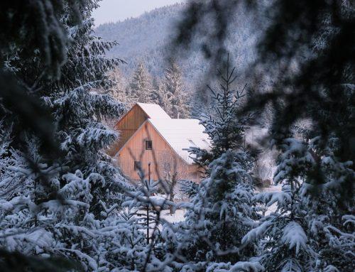 """Muzejski večer """"Hiša Mandrova – lesena hiša, ki izboljšuje okolje"""", 10. 9. 2021 – ODPOVEDAN!"""